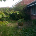 Sådan så denne have ud før vi gik i gang.